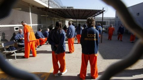 7 'high-risk' sex offenders released from Calif. jail
