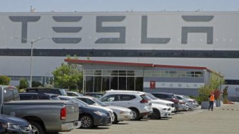 Tesla's Elon Musk targeted over Calif. reopening lawsuit