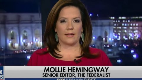 CNN Russian Collusion Hoaxer Is Trying To Deplatform Mollie Hemingway