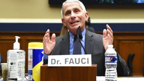 Dr. Fauci: No officials have been told to slow down COVID-19 testing