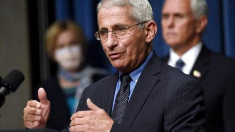 Dr. Fauci: Community spread 'insidious,' economy should be reopened in a 'measured way'