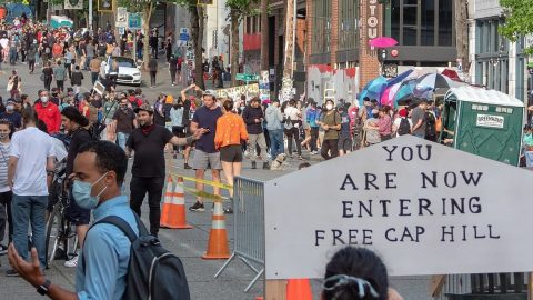 Vegan Utopia Or Urban Anarchy?