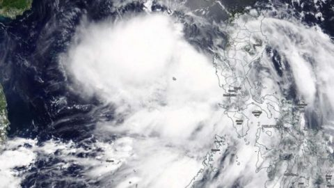 Typhoon Nuri makes landfall in China