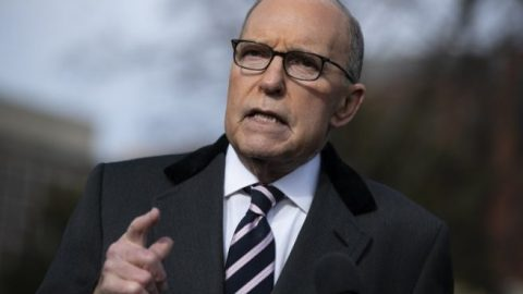 Kudlow on virus aid: 'We're paying people not to work'
