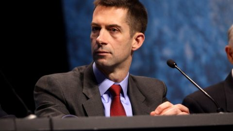 Tom Cotton Introduces Legislation To Ban Federal Funding Of Schools Teaching Fake History