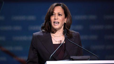 Kamala Harris Has 'No Remorse' For Ambushing Biden In Primary Debates