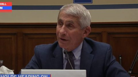 Anthony Fauci Refuses To Say Whether Mass Protests Should Be Limited